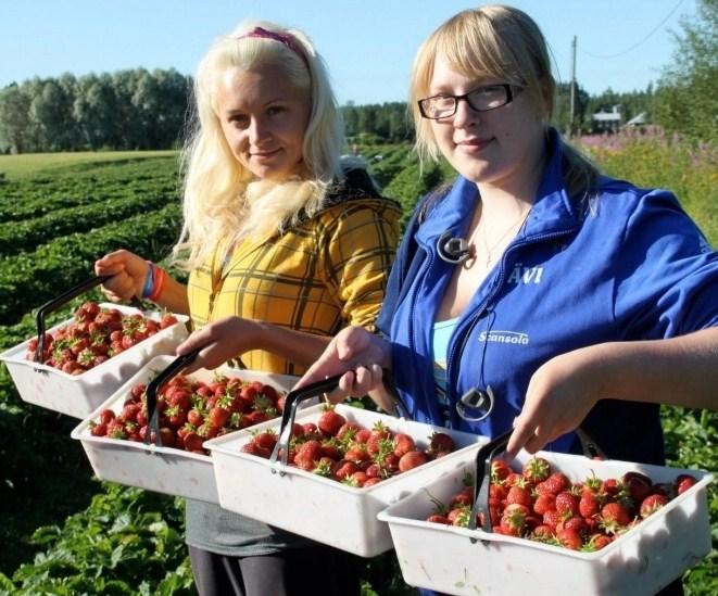 Скільки людей виїде з України на заробітки: названо приголомшливі цифри
