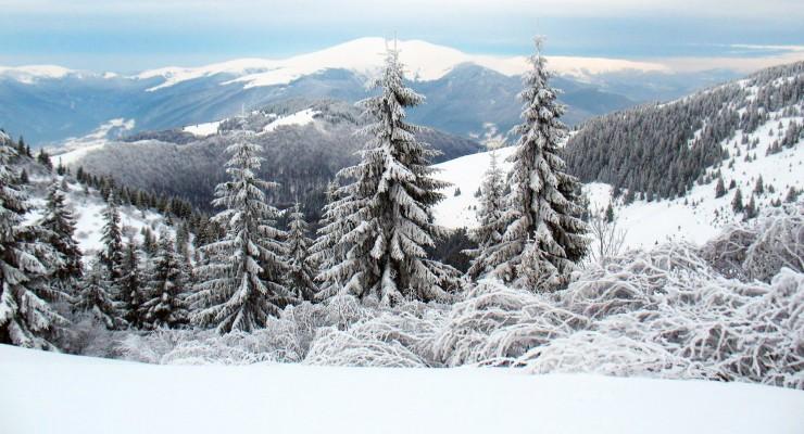 Температура повітря вночі 2° тепла - 3° морозу, вдень 0-5° тепла, на високогір'ї протягом доби 3-7° морозу.