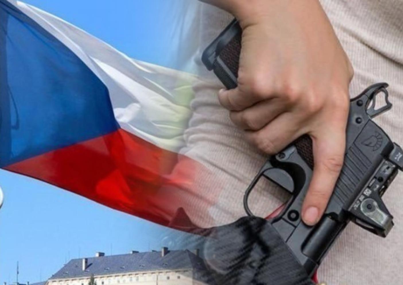 Відповідні правки до конституції щодо застосування зброї для захисту життя затвердила Верхня палата парламенту Чеської Республіки.