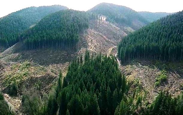Кабинет министров принял проект постановления, строго ограничивающий вырубки на горных склонах Карпатского региона.