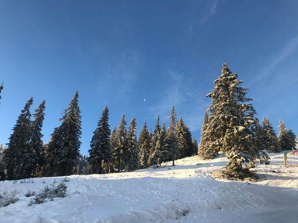 У горах Закарпаття справжня зима.