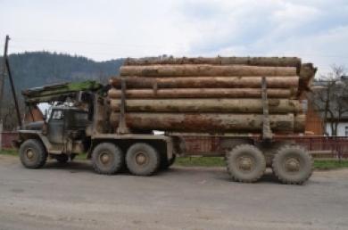 Попався: на Воловеччині затримали нетверезого водія лісовоза