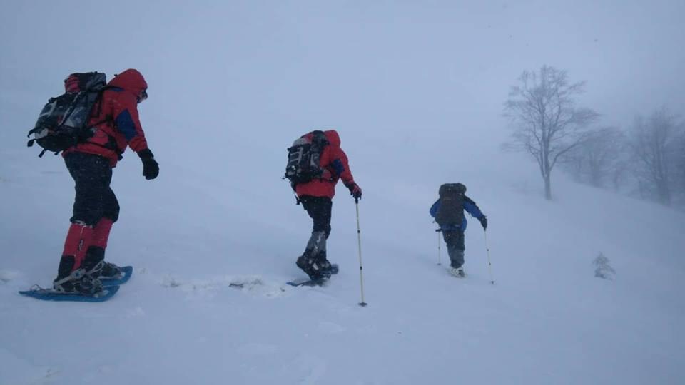 Прикарпатські рятувальники у горах шукали чергового заблукалого туриста