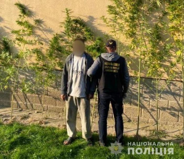 Оперативники Управління боротьби з наркозлочинністю спільно зі слідчими поліції Мукачева вилучили у 26-річного фігуранта злочину 1 кілограм марихуани та рослини коноплі.