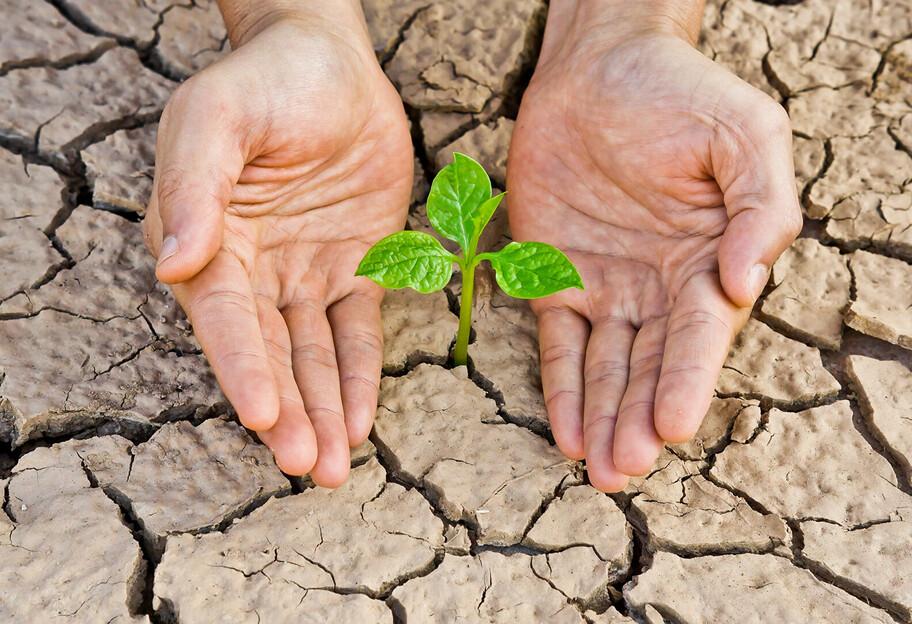 До п'ятірки країн з високим ризиком посухи увійшли: Молдова, Україна, Бангладеш, Індія та Сербія.