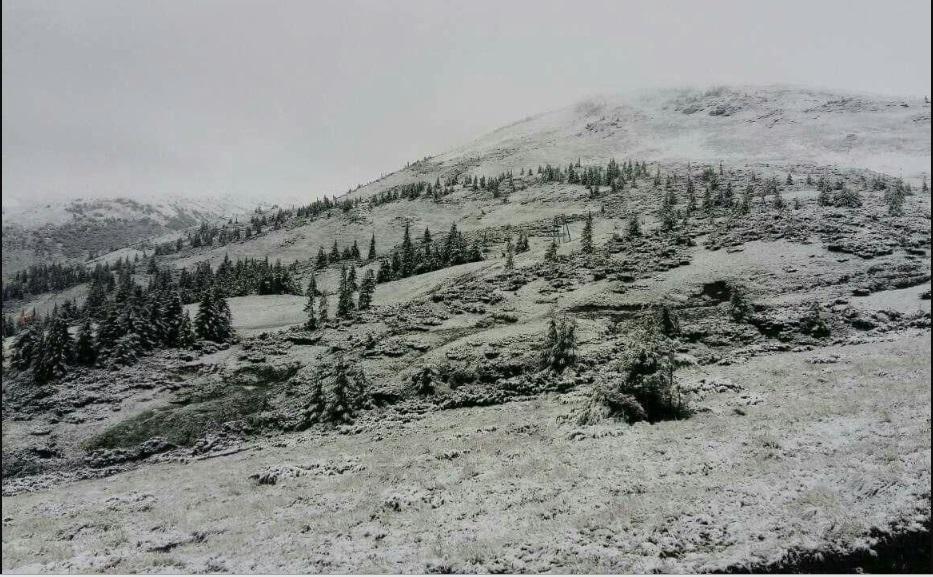 Напередодні, 11 липня, вкрило сніжним пухом високогірний гірськолижний курорт Драгобрат та гору Піп Іван, а також Петрос.