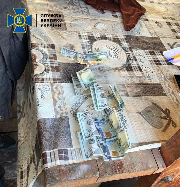 Служба безпеки України викрила посадових осіб державного лісового агропідприємства «Іршаваагроліс» на систематичному отриманні неправомірної вигоди за незаконну реалізацію цінних порід дерев.