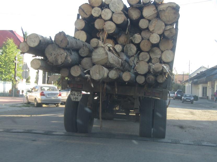 39 кубометрів немаркованої ділової деревини, зрубаної у Брустурянському держлісгоспі, везли підприємцю у Солотвино.
