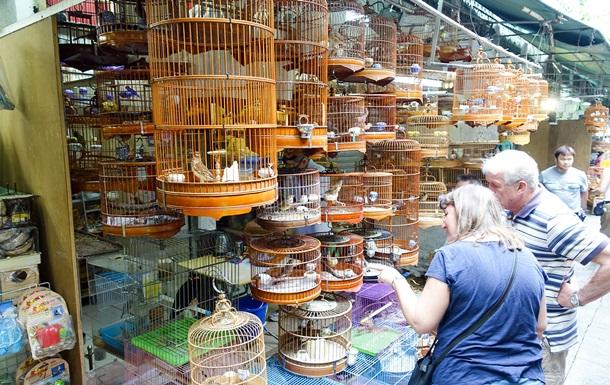 Зареєстрований в липні законопроект №3796 може розширити перелік тварин, яких необхідно поставити на облік/