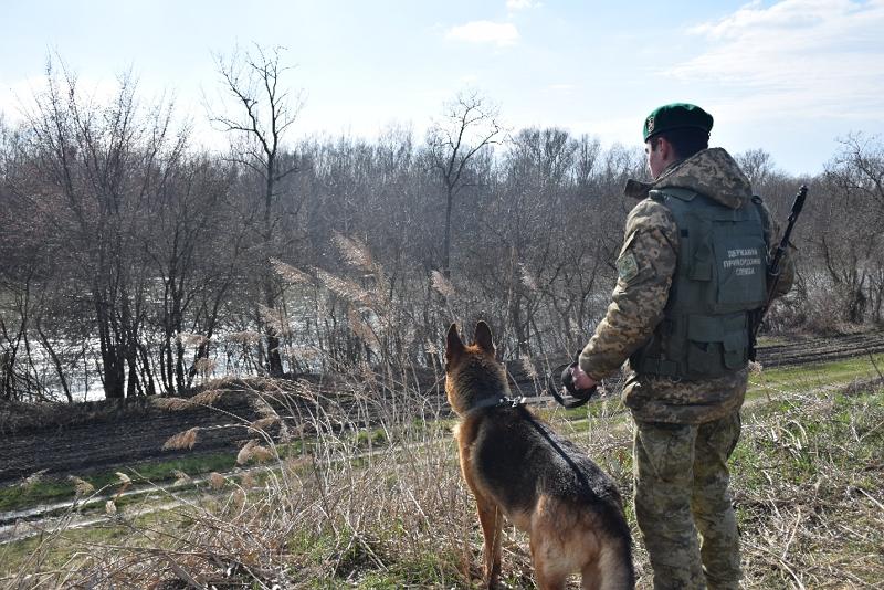 Близько 1-шої години ночі прикордонний наряд відділення «Вилок» спостерігав рух однієї особи у бік водного каналу Ботар, через який проходить українсько-угорський кордон.