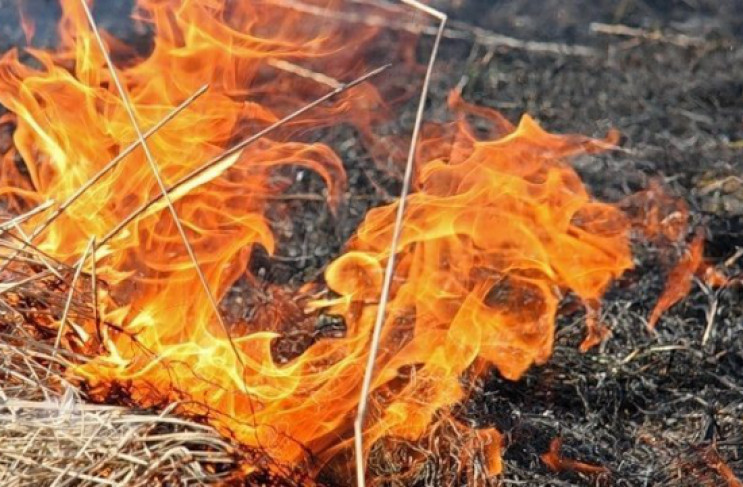 На більшій частині території Закарпатської області очікується висока пожежна небезпека