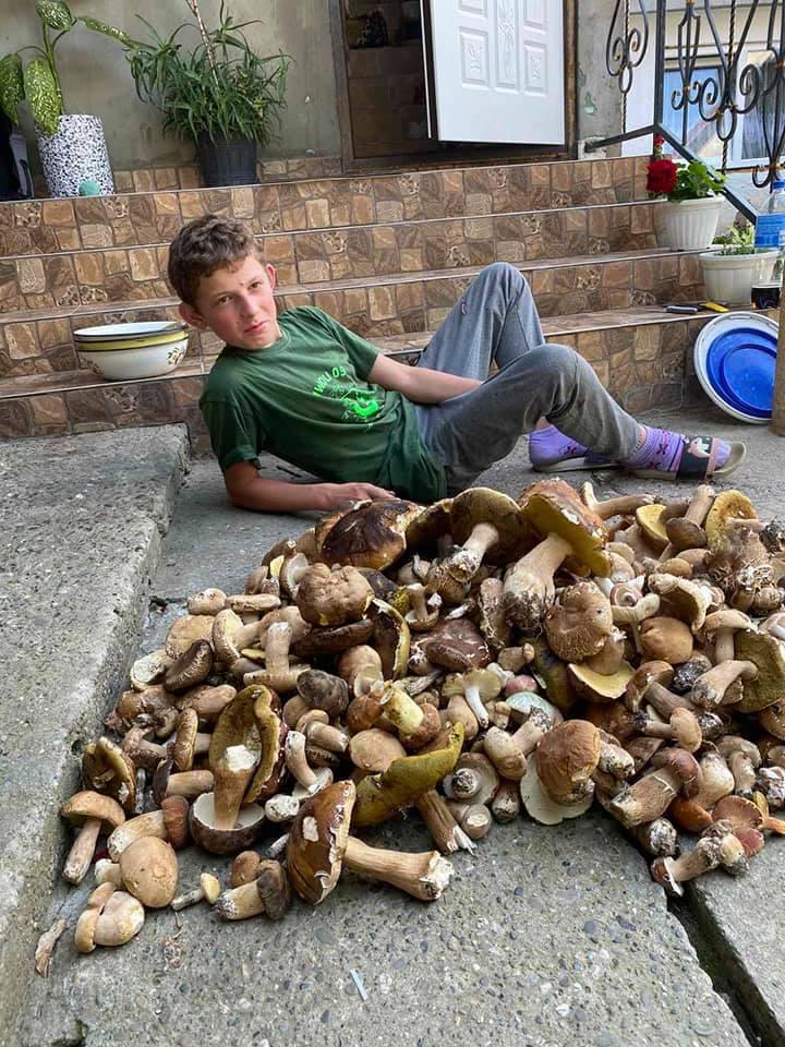 Тепле літо сприяє грибним знахідкам.