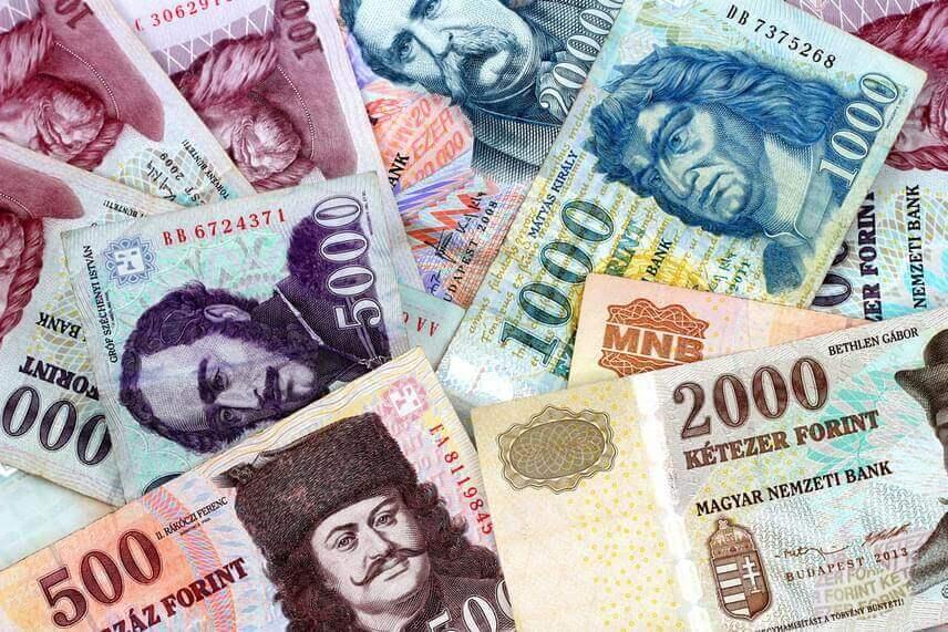 В предпоследний день года гривна подорожала на десять копеек к доллару и на две - к евро.