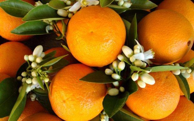 В Україну завезли 25 тонн апельсин з личинками