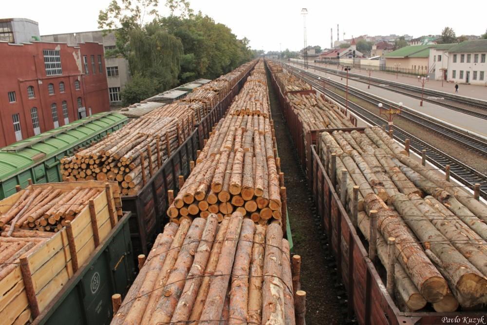 Як повідомили в пресслужбі Закарпатської митниці Держмитслужби, основними експортними товарами у 2020 році були: деревина і вироби з деревини.