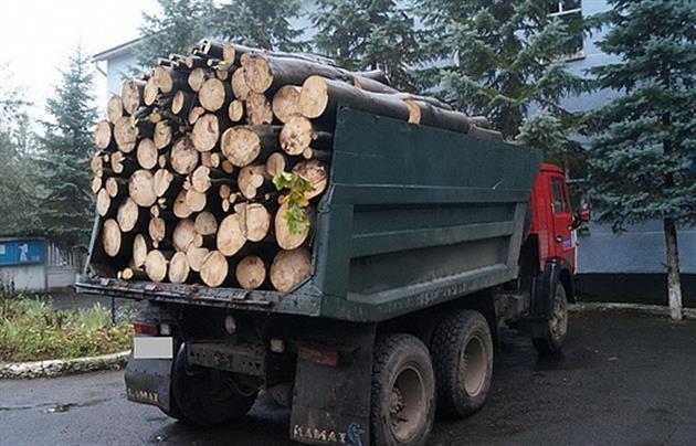 так картинки камаз груженный древесными отходами важным