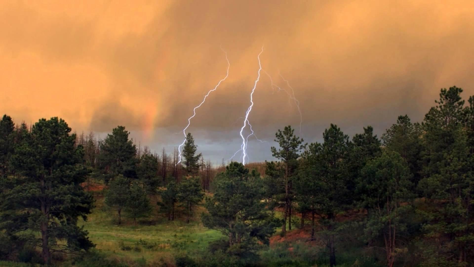 На Закарпатті оголошено штормове попередження: область накриють дощі та грози