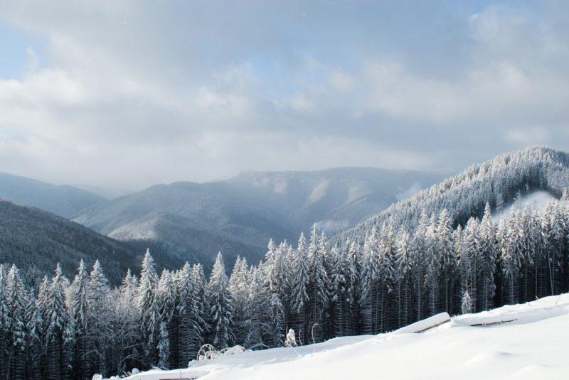 Температура повітря вночі 3-8°, на високогір'ї до 10° морозу, вдень 0-5° тепла, у горах подекуди 1-5° морозу.