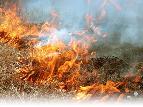 14-16 вересня очікується висока пожежна небезпека в області.