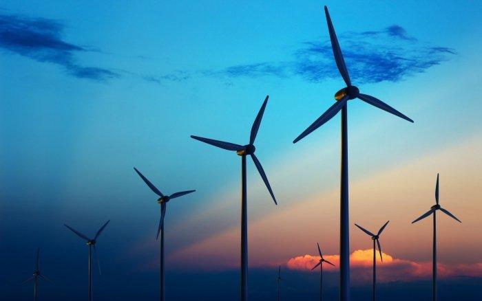 Бій з вітряками: думки закарпатців щодо будівництва вітропарку на Боржаві розділились