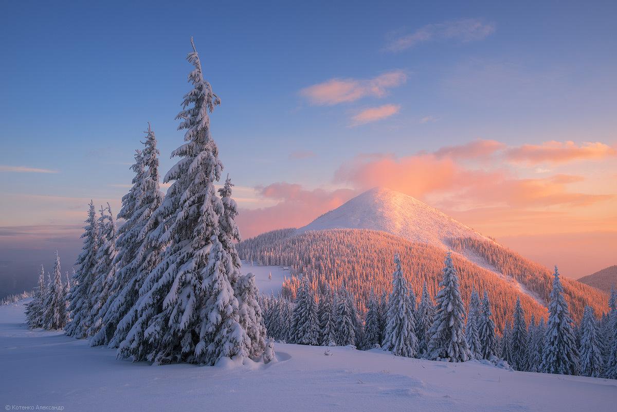 Температура повiтря вночi 0-5° морозу, вдень 2-7° тепла, в горах мiсцями вночi до 8° морозу, вдень 0-3° морозу.