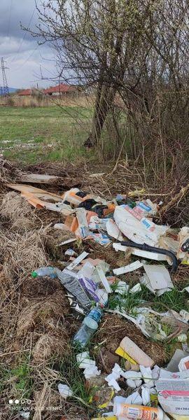 На в'їзді до села Павшино системно викидають відходи.