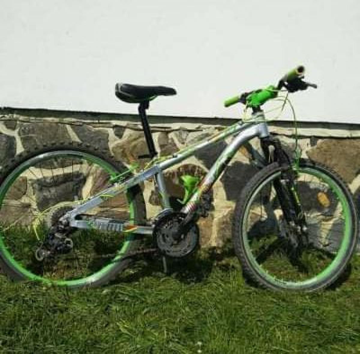 З дворогосподарства жителя Берегова зник велосипед, сумка з грошима та мобільний телефон.