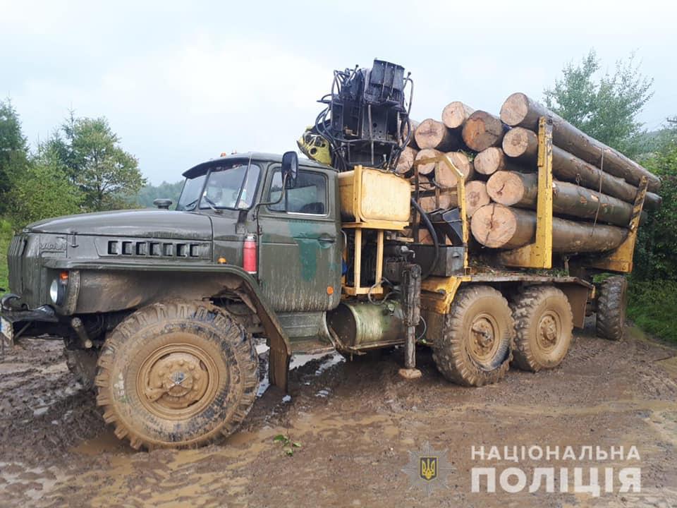 У селі Оленево, що неподалік Сваляви, поліцейські припинили черговий злочин проти довкілля.