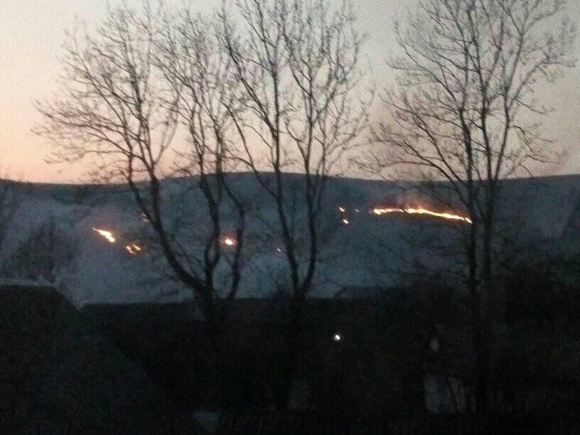 Невідомі підпалили сухостій поблизу села Верхні Ворота, що у Воловецькому районі.