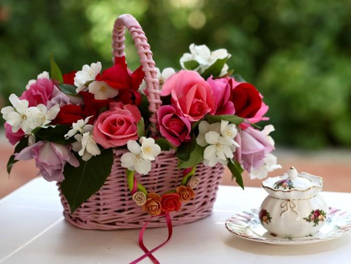 11 квітня народились: Ватрала Алла та Сергеєва Оксана.