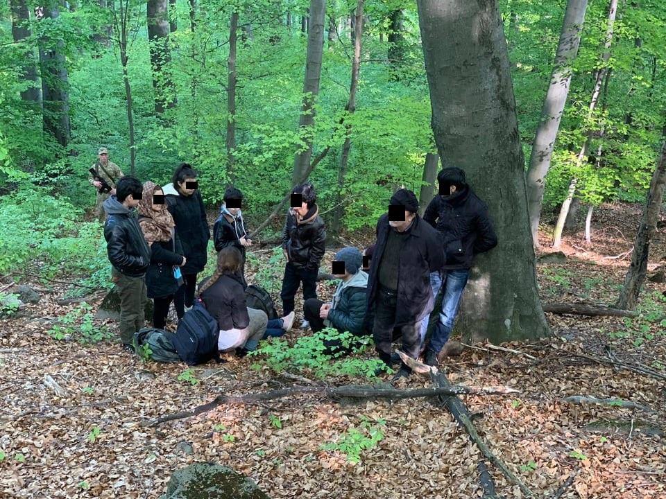 Сьогодні ввечері прикордонники відділу «Ужгород» затримали одинадцять іноземців, які намагались дістатися сусідньої Словаччини поза пунктами пропуску.