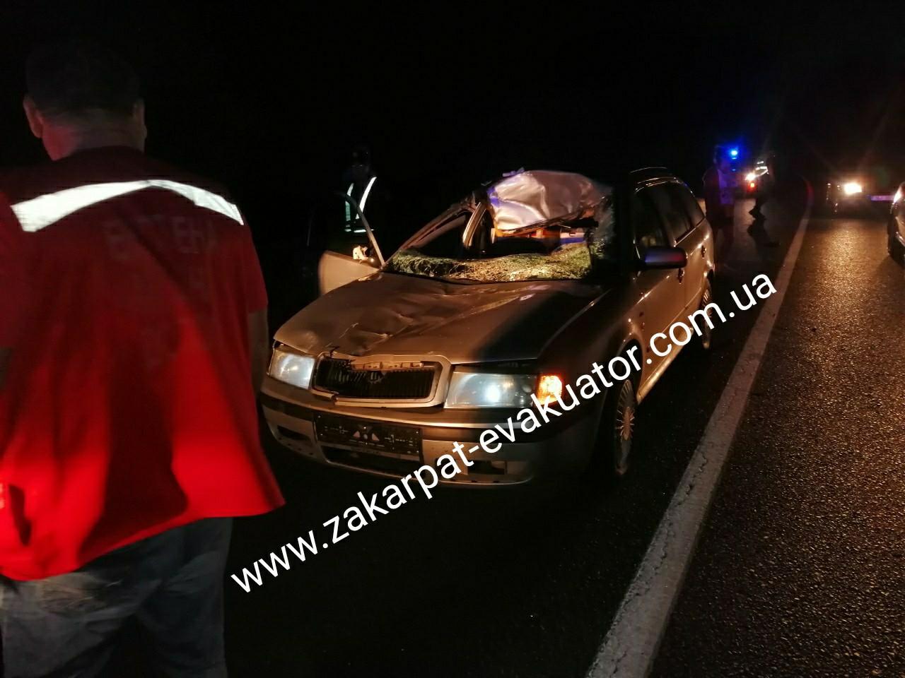 Аварія трапилась на Мукачівщині біля села Чинадієво.