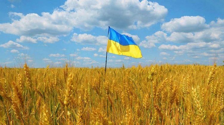 В Україні - велика битва за землю.