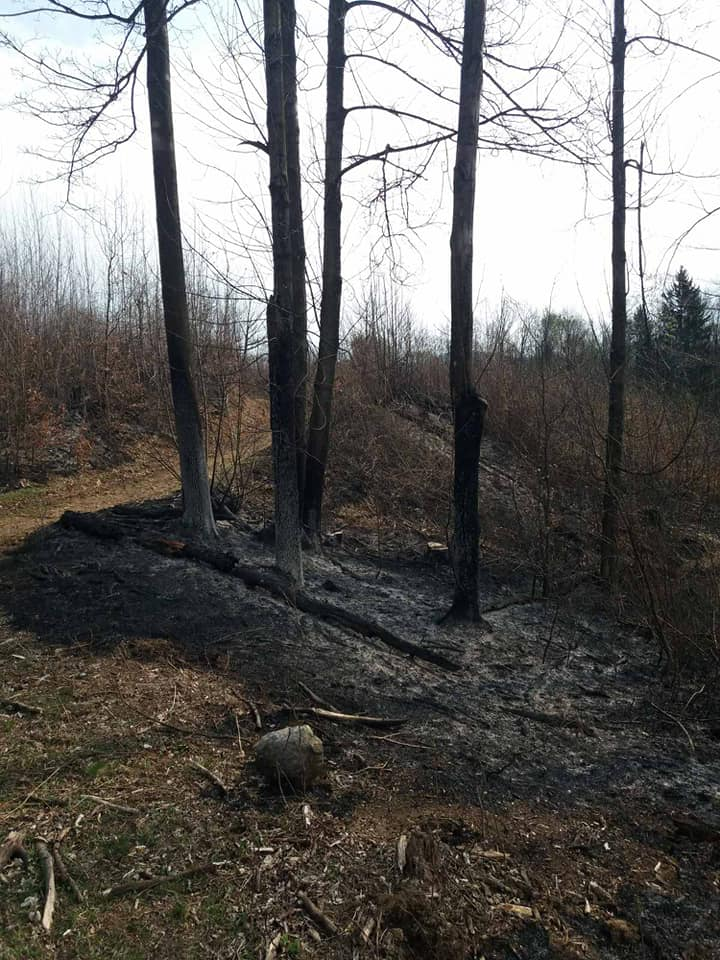 У суботу, 11 квітня, на території Ільницького лісництва НПП «Зачарований край» на Іршавщині лісівниками було ліквідовано загоряння сухої трави та лісової підстилки.