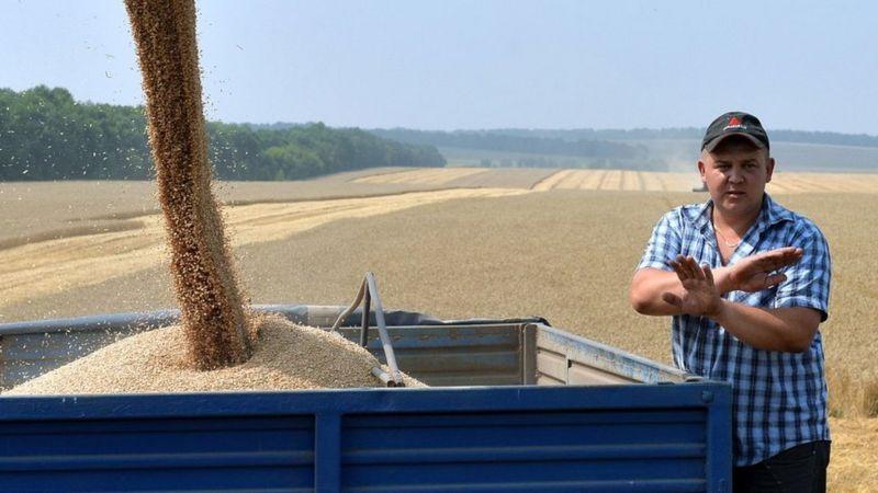 З 1 липня в Україні скасовують мораторій на продаж аграрної землі. Раніше депутати кількох скликань регулярно його подовжували, а різні варіанти проєктів про ринок землі відкидали.