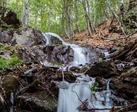 «Гучало» – водоспад, що розташований у Іршавському районі Закарпатської області, між селами Підгірне та Крайня Мартинка.