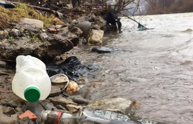 Ініціативу закарпатця підтримали волонтери та організатори ПЕТ Кубка Тиси, які до цього часу займались очищенням ріки від побутових відходів лише на території Угорщини.