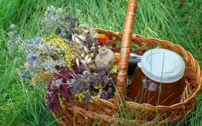 Різнобарвні букетики, колоски тамед— бердичівляни відзначають Медовий спас