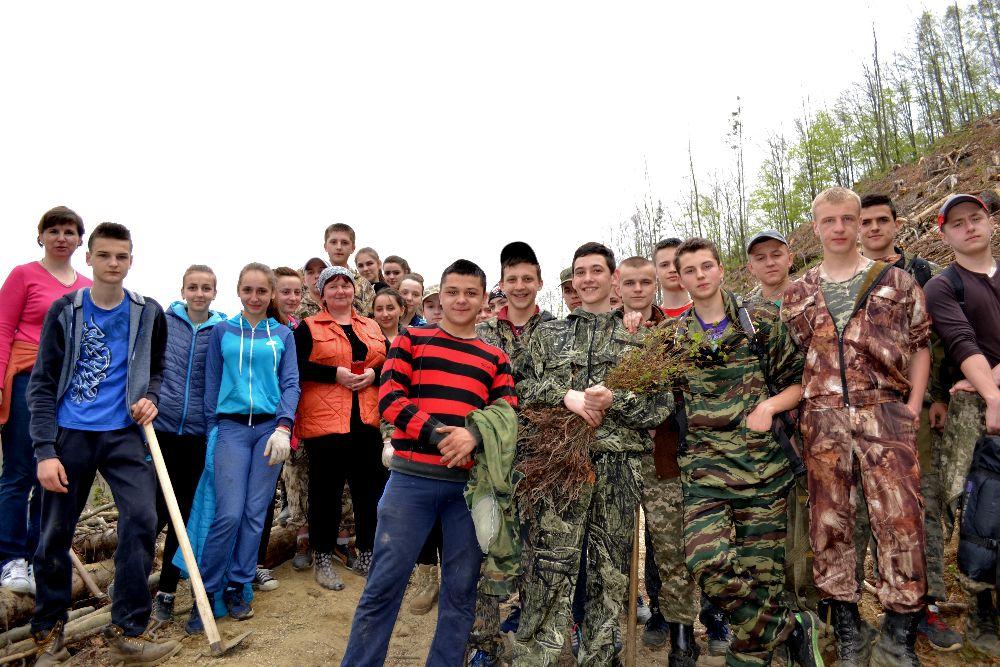 На схилах Боржави висадили новий ліс