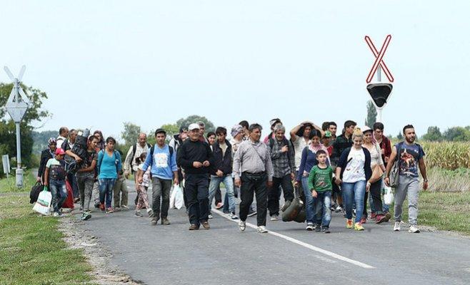 Поліція Чехії розповіла, скільки нелегальних мігрантів було виявлено в Чехії за 9 місяців минулого року.