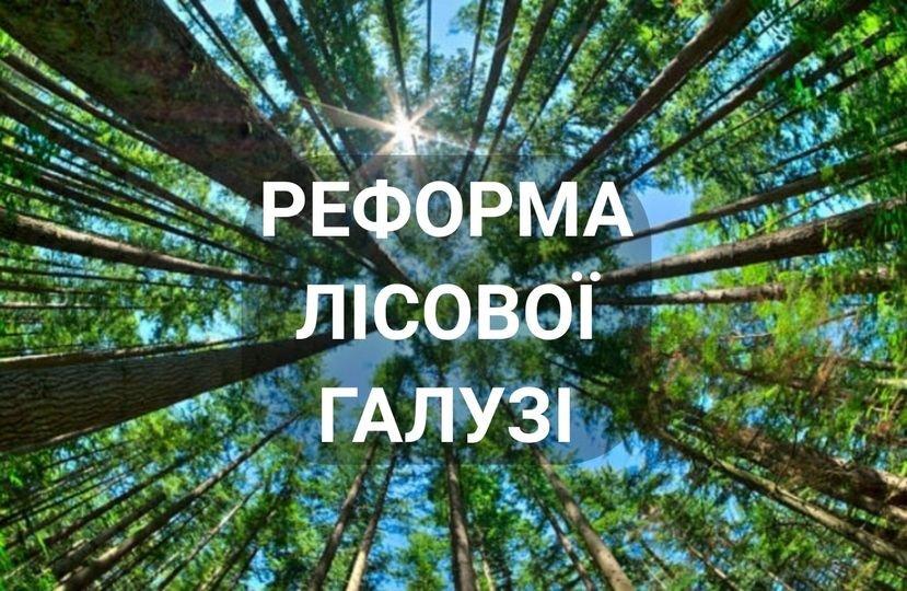 Про це Олексій Петров заявив на своїй офіційній сторінці.