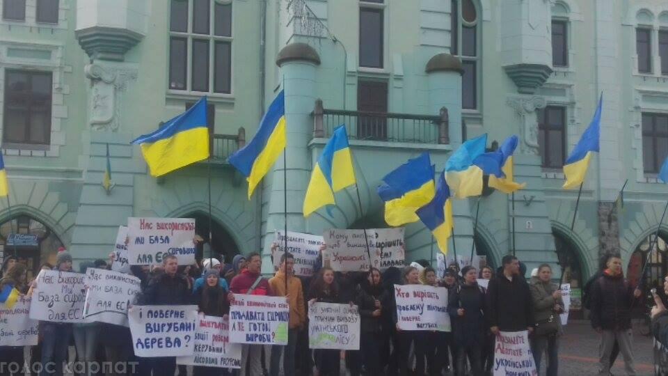 В центрі Мукачева молодь влаштувала мітинг проти вирубки лісів на Закарпатті