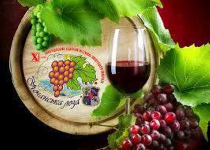5-6 травня Виноградівщина готується зустрічати туристів та жителів району на традиційному фестивалі виноградарів-виноробів