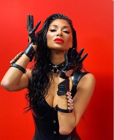 Відома американська співачка і солістка групи The Pussycat Dolls Ніколь Шерзінгер вирішила подражнити своїх фанатів.