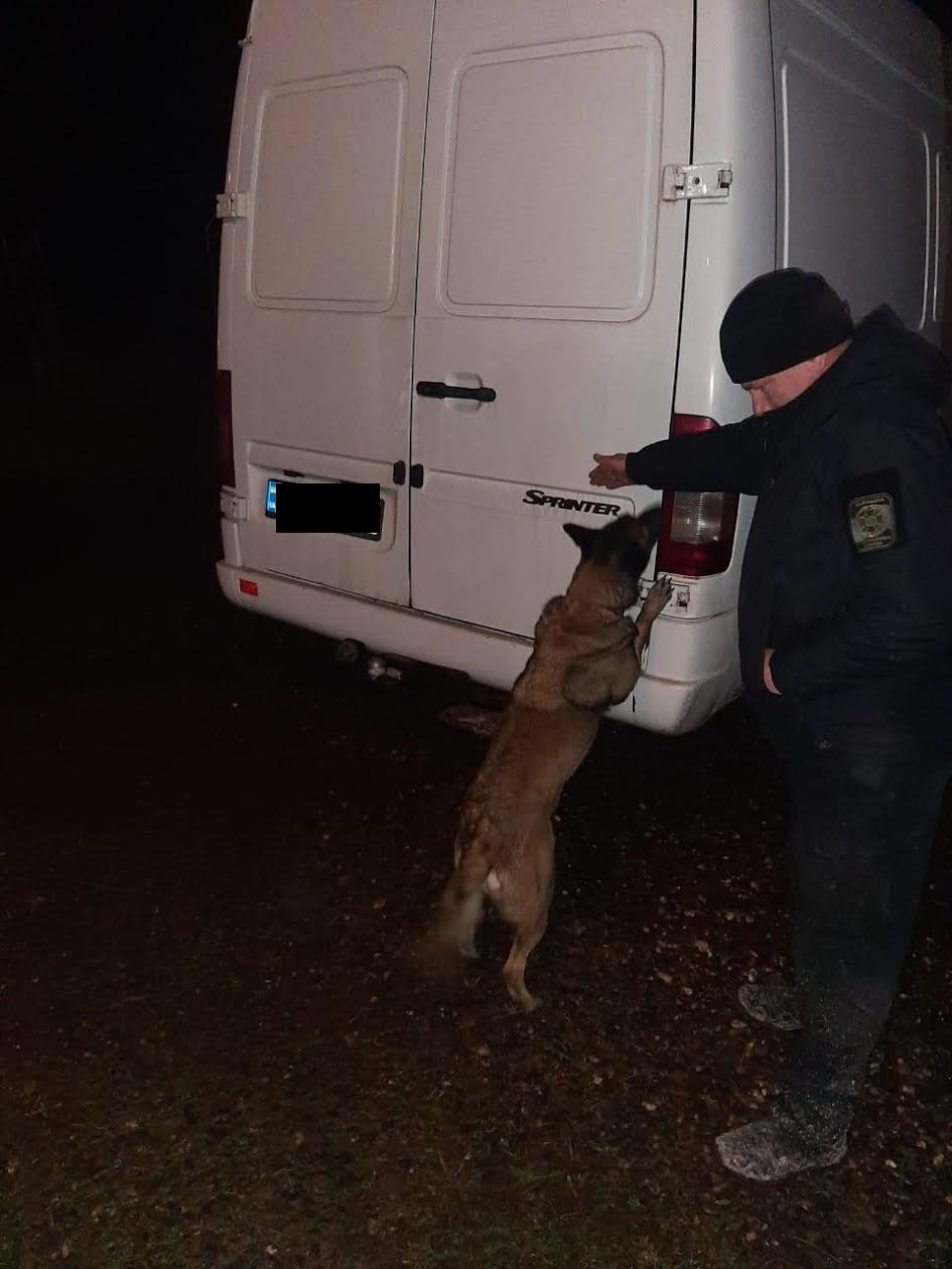 Минувшей ночью на границе с Румынией пограничники Дьяковского отдела Мукачевского отряда совместно с таможенниками предотвратили попытку незаконного перемещения сигарет.