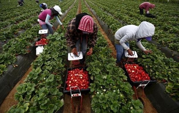 Стабільно високий обсяг надходжень від трудових мігрантів заохочував сприятливу ситуацію на валютному ринку.