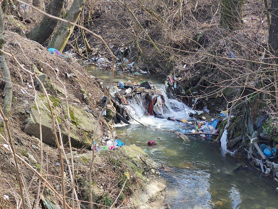 Купи сміття утворюють пороги на маленькій річці.