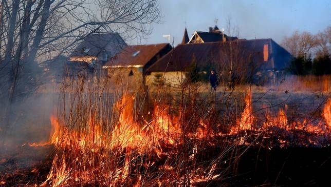 Разом із весняним потеплінням на Закарпаття приходять пожежі в екосистемах.