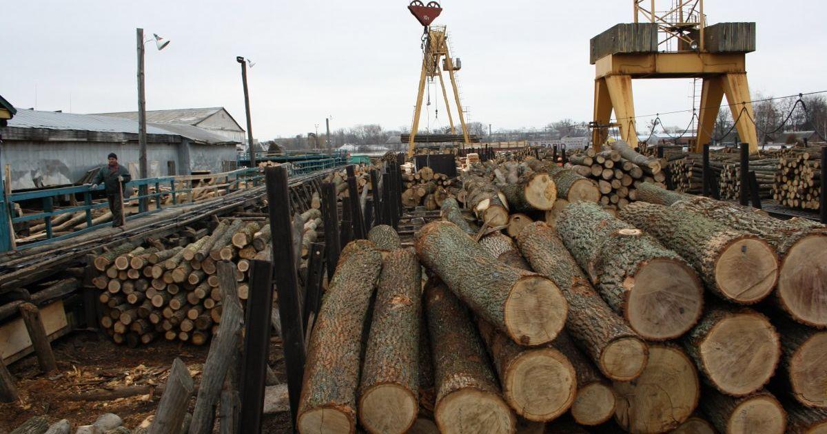 Після того, як буде забезпечена прозорість на внутрішньому ринку, Україна може почати продавати ліс-кругляк у Євросоюз.