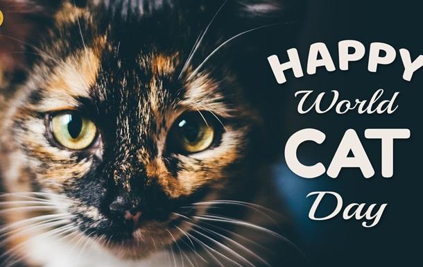 Кішки є найпоширенішими домашніми вихованцями по всьому світу. Найбільше їх налічується в Австралії.